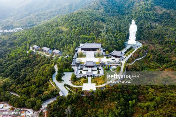 la statua di guanyin in bronzo all'interno del monastero buddista tsz shan a tai po, hong kong - guanyin bodhisattva foto e immagini stock