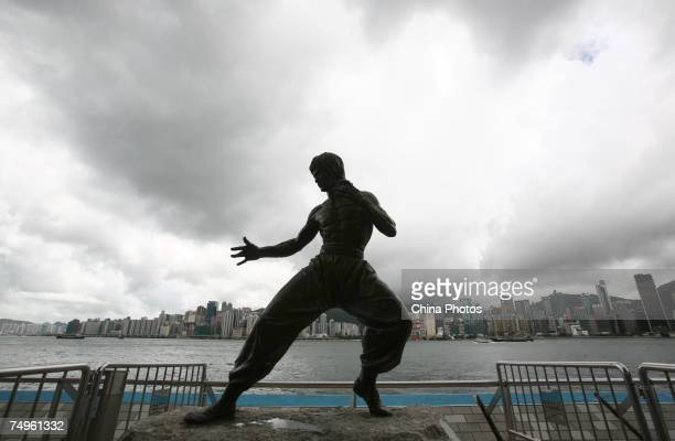 The bronze statue of late martial arts legend and actor Bruce Lee stands at the Avenue of Stars June 29 2007 in Hong Kong China