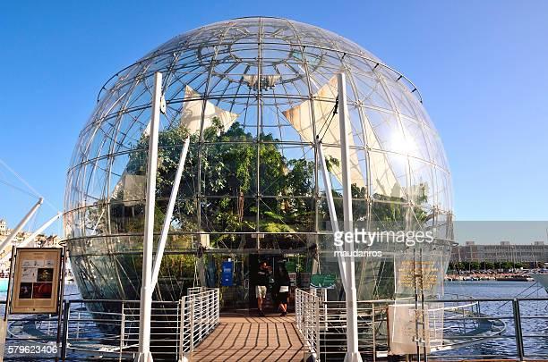 the bubble (biosphere)