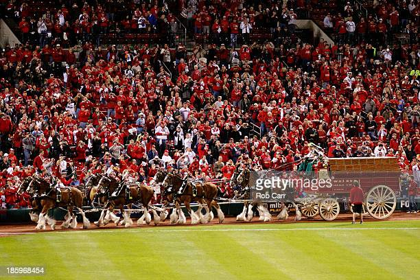 The Budweiser clydesdale horses walk on the field prior to Game Three of the 2013 World Series between the St Louis Cardinals and the Boston Red Sox...