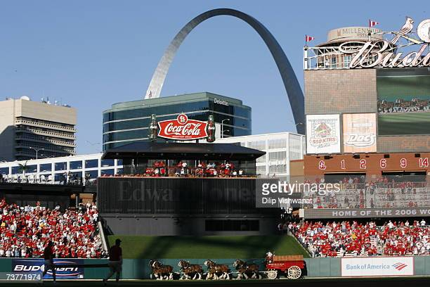 The Budweiser Clydesdales make their way around Busch Stadium before the New York Mets game against the St Louis Cardinals during their Opening Day...