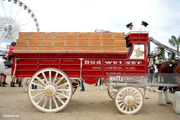 The Budweiser wagon and Clydesdale horses are seen during 2016 Stagecoach California's Country Music Festival at Empire Polo Club on April 30 2016 in...