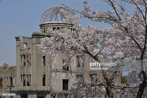 The building was originally built as Hiroshima Prefectural Industrial Promotion Hall in 1915. The atomic bomb dropped by the American B-29 bomber in...