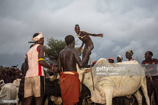 CONTENT] the Bull jumping ceremony in the bush near turmi is a rite of passage ceremony for boy coming of age must be done before a boy is permitted...