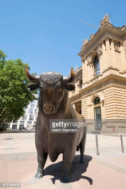 the bull of the sculpture bull and bear at the stock exchange, frankfurt am main, hesse, germany - frankfurt börse stock-fotos und bilder