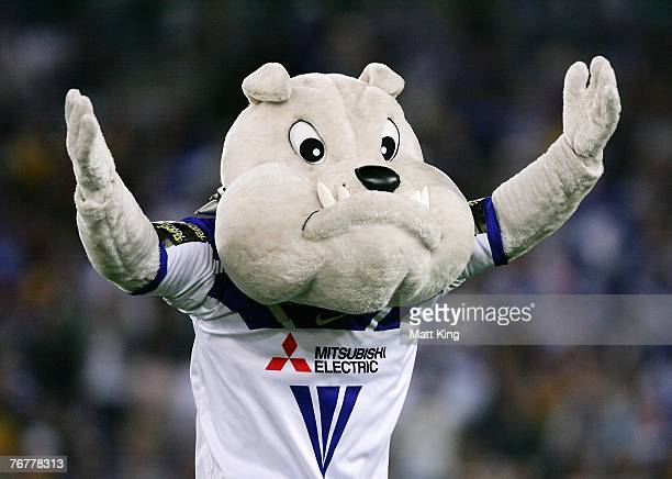 The Bulldogs mascot runs onto the field during the NRL Semi Final one match between the Parramatta Eels and the Bulldogs at Telstra Stadium September...
