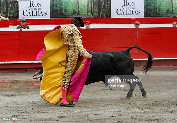 The bullfighter Sebastian Castella struggling to a bull of the livestock Achuri Viejo during the fourth bullfight as part of the Manizales Fair on...
