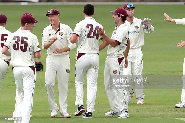 The Bulls celebrate a wicket during day one of the Sheffield Shield match between Queensland and Western Australia at The Gabba on March 06, 2021 in...