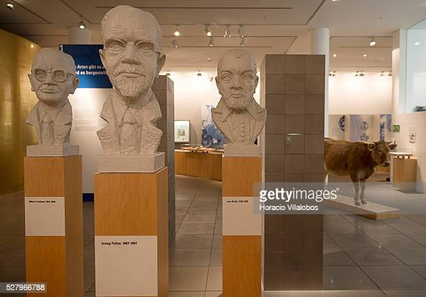 The busts of economists Milton Friedman, Irving Fisher and Jean Bodin, offered one of the earliest scholarly analyses of the phenomenon of inflation,...