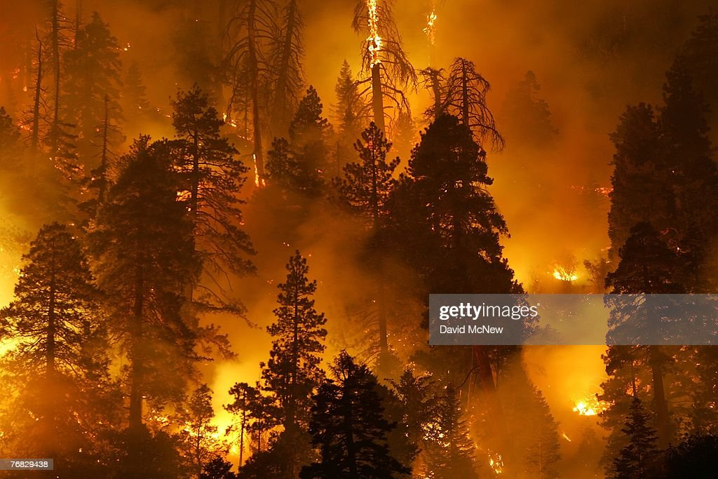 Wildfire Continues To Burn In San Bernardino National Forest : News Photo