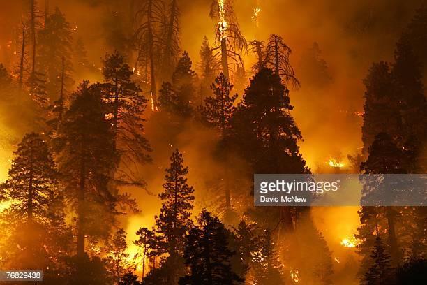 The Butler 2 Fire burns through the early morning hours on September 18 2007 near Fawnskin California Earlier today a singleengine air tanker...