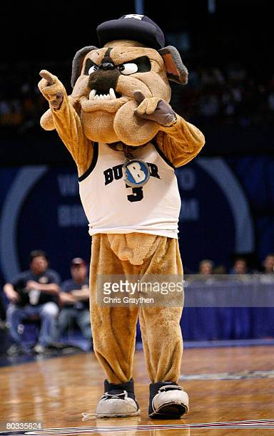 The Butler Bulldogs mascot performs during the first round of the South Regional as part of the 2008 NCAA Men's Basketball Tournament at the...