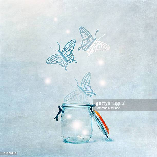 the butterfly jar - catherine macbride stock pictures, royalty-free photos & images