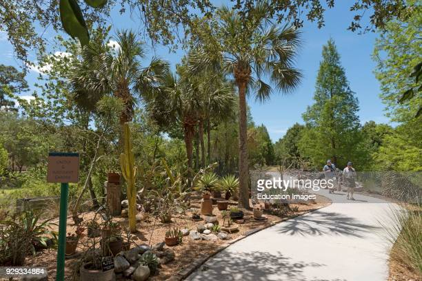 The cactus and succulent garden at the Florida Botanical Garden in Largo Florida USA