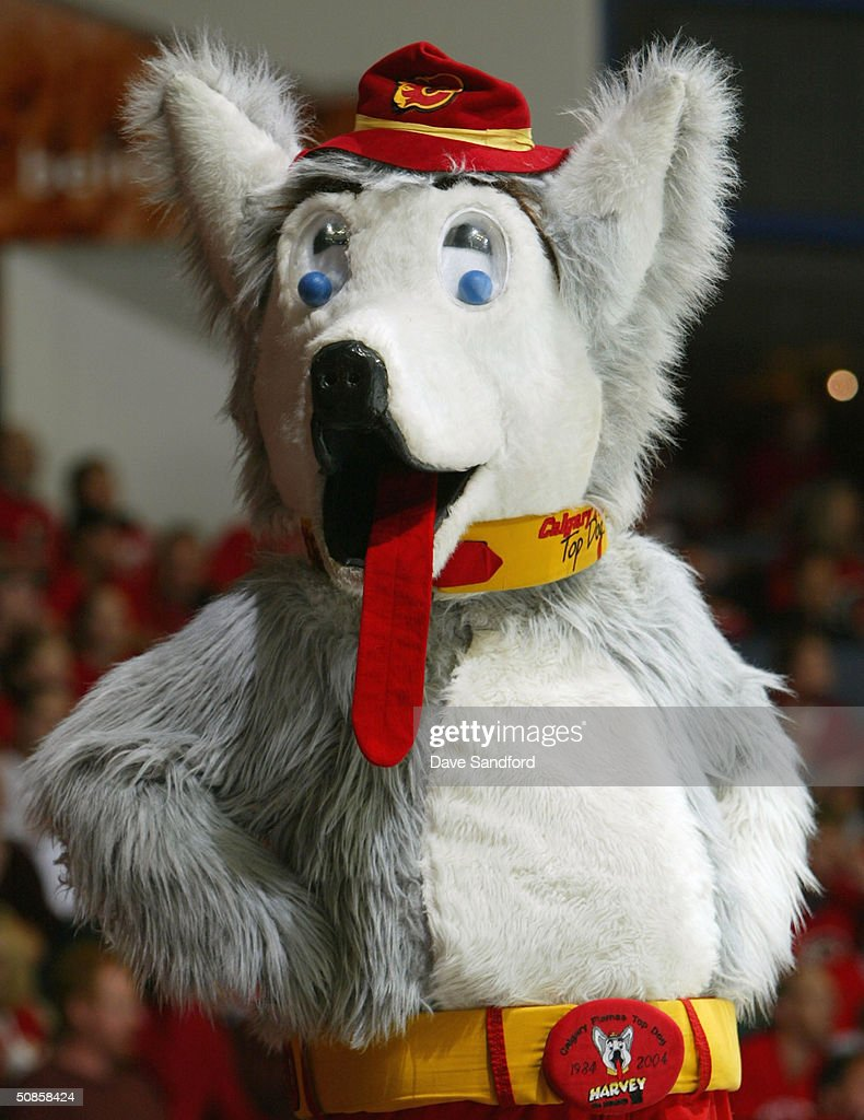 The Calgary Flames mascot 'Harvey the Hound' looks on during Game six of the 2004 NHL Western Conference Finals against the San Jose Sharks on May 19, 2004 at the Pengrowth Saddledome in Calgary, Alberta.
