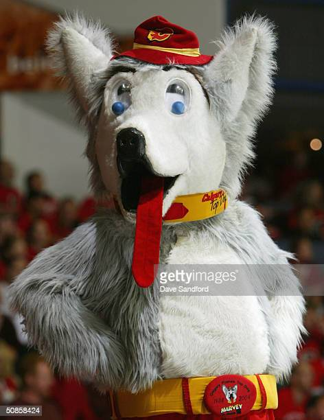 The Calgary Flames mascot Harvey the Hound looks on during Game six of the 2004 NHL Western Conference Finals against the San Jose Sharks on May 19...