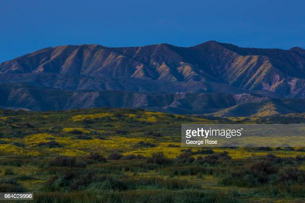 The Caliente Mountains along the Carrizo Plain are viewed before sunrise on March 29 in Carrizo Plain National Monument California Located in the...