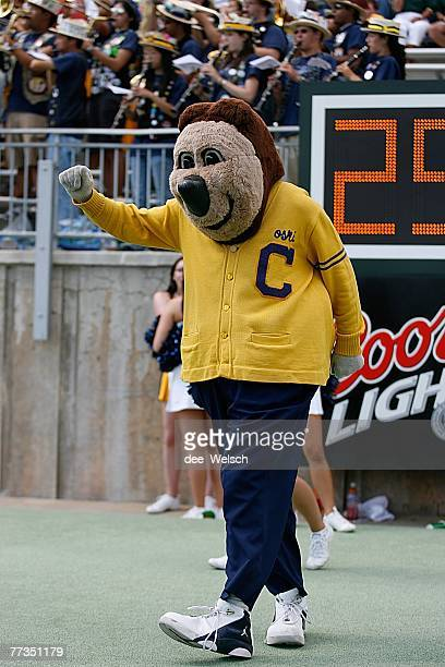 The California Golden Bears mascot cheers during the game against the Colorado State Rams at Hughes Stadium on September 8 2007 in Fort Collins...