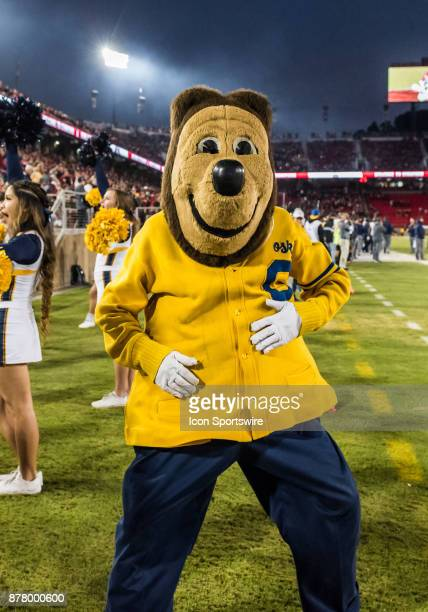 The California Golden Bears mascot warming up before the regular season game between the California Golden Bears and Stanford Cardinals on Saturday...