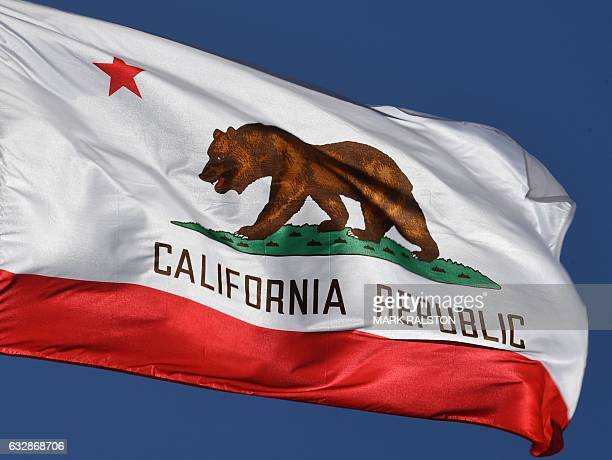 The California State flag flies outside City Hall in Los Angeles California on January 27 2017 A campaign by Californians to secede from the rest of...