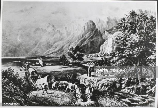 The Californian Gold Rush of 1849 Many of the 'Forty niners' crossed the United States from the east to the Gold fields of California in 'Conestoga'...