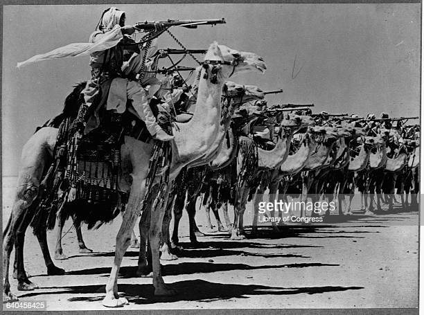 The Camel Corps of the Arab Legion practices firing from camelback during World War II