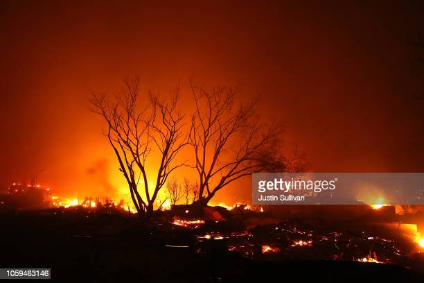 The Camp Fire consumes homes and businesses on November 8 2018 in Paradise California Fueled by high winds and low humidity the rapidly spreading...