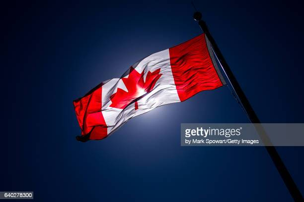 the canadian flag - canadian flag stock pictures, royalty-free photos & images