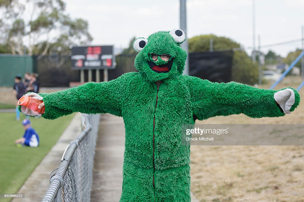 The Canberra United mascot before the the round 14 W-League match between Canberra United and Melbourne Victory at McKellar Park on January 28, 2017 in Canberra, Australia.