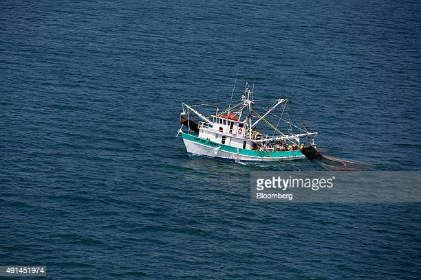The Capitan Maravilla shrimping boat sit in the waters near Dautillos Mexico on Wednesday Sept 30 2015 A summer ban on shrimp fishing in the Mexican...