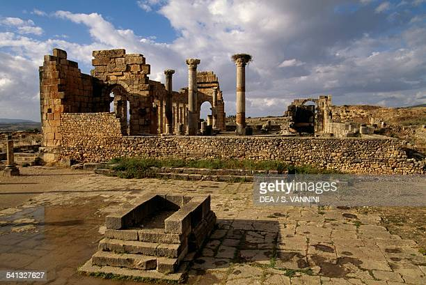 The Capitol and behind the ruins of the Basilica, Roman city of Volubilis , Morocco. Roman civilisation, 2nd-3rd century.