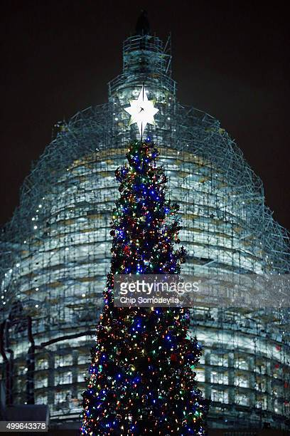 The Capitol Christmas tree is shown lighted during a ceremony on the west front of the US Capitol December 2 2015 in Washington DC This year's tree a...