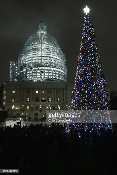 The Capitol Christmas tree is shown lighted during a ceremony on the west front of the U.S. Capitol December 2, 2015 in Washington, DC. This year's...