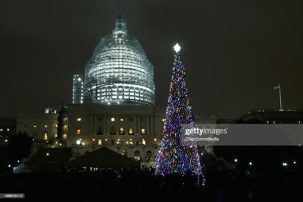 Ceremony Held For Annual Lighting Of Capitol Hill Christmas Tree : News Photo