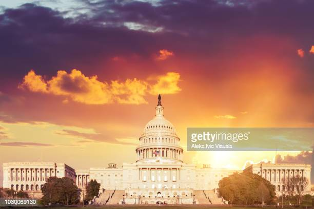 the capitol - politics and government stock pictures, royalty-free photos & images