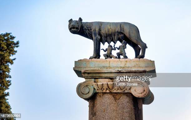 The Capitoline Wolf is seen at the Capitoline Hill on October 31 2017 in Rome Italy Rome is one of the most popular tourist destinations in the World