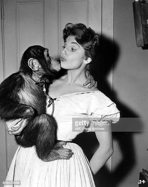 BOWIE The Captain's Chimp Airdate March 8 1957 LITA