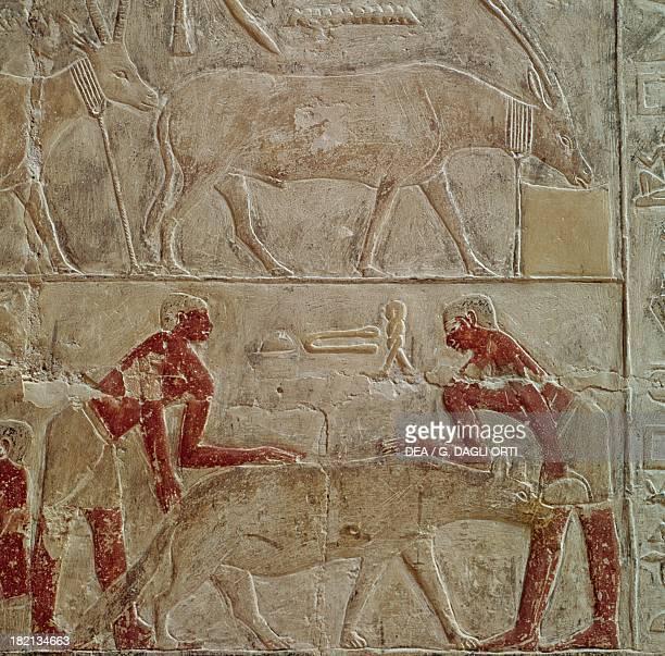 The capture of a hyena painted relief Mastaba of Mereruka Saqqara Egyptian Civilisation Old Kingdom Dynasty VI