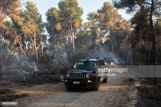 POLLINO VILLAPIANA CALABRIA ITALY The carabinieri in a forest destroyed during a huge fire that destroyed a vast area of woods pine forests and...