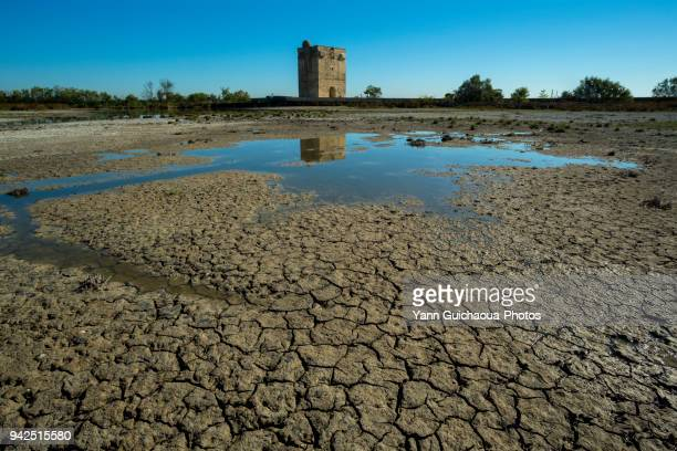 the carbonniere tower, saint laurent d aigouze, camargue, gard, france - sec photos et images de collection