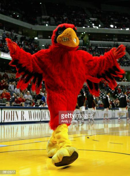 The Cardinal Bird which is the mascot for the University of Louisville entertains the crowd during the John Wooden Tradition game against Iowa on...