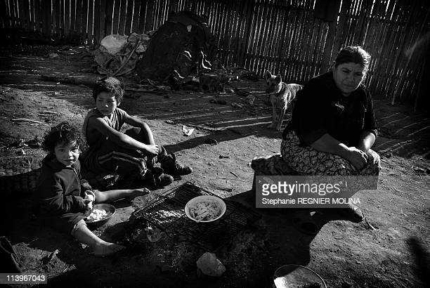 The Carpate Soul Daily Life Of A Gipsy Family In The Carpate Area In Miercurea Ciuc Romania On August 01 2009Daily life Romanian Roma woman with her...