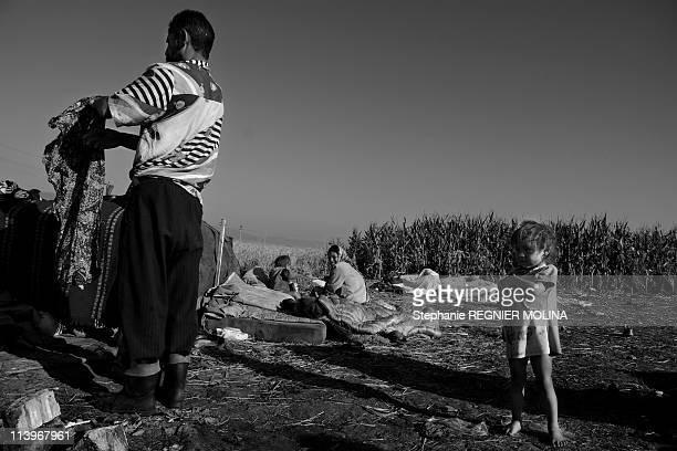 The Carpate Soul Daily Life Of A Gipsy Family In The Carpate Area In Miercurea Ciuc Romania On August 01 2009Daily life Romanian Roma man with his...