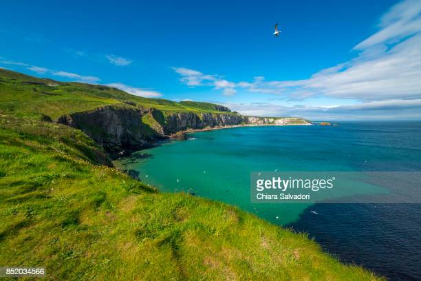 The Carrick-a-Rede