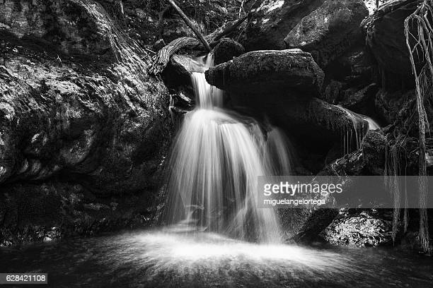 the cascade - blanco y negro stock pictures, royalty-free photos & images