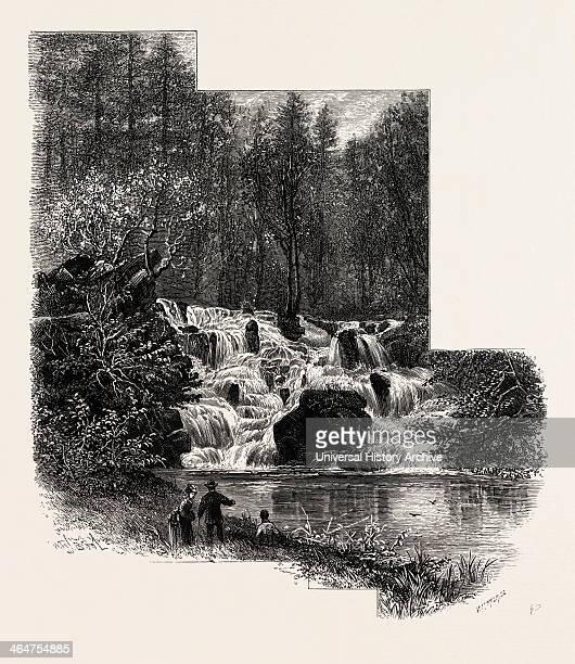 The Cascade, Virginia Water, Village Being In The Borough Of Runnymede In Surrey, UK, Britain, British, Europe, United Kingdom, Great Britain,...