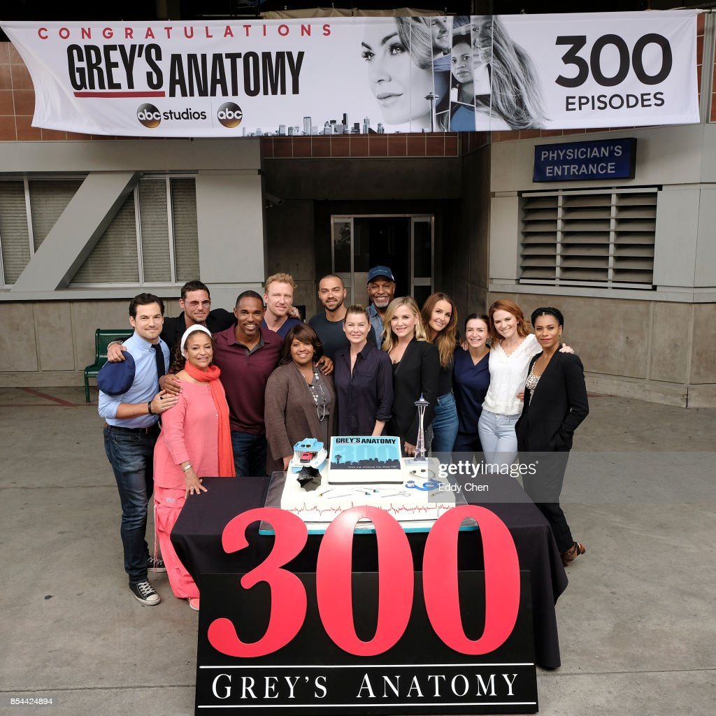 S ANATOMY - The cast and Executive Producers of ABCs Greys Anatomy ...