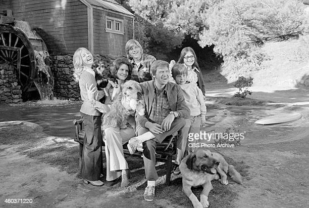 The cast of Apple's Way From left Patti Cohoon as Cathy Apple Frances Lee McCain as Barbara Apple Vincent Van Patten as Paul Apple Ronny Cox as...