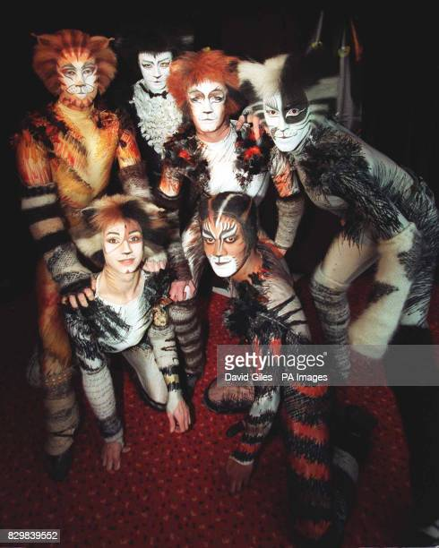 The cast of Britain's longestrunning musical 'Cats' by Sir Andrew Lloyd Webber Jimmy Johnston Thomas paton Alastair Bull Nunzio Lombardo Sandy Rass...