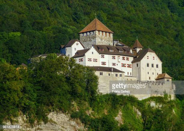 the castle in vaduz, capital of liechtenstein - vaduz castle stock photos and pictures
